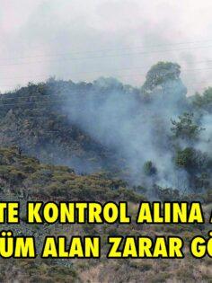 DALAMAN BEZKESE MAHALLESİ ORMAN YANGINI 3 SAATTE KONTROL ALINA ALINDI.7 DÖNÜM ALAN ZARAR GÖRDÜ.