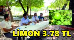LİMON 3.78 TL